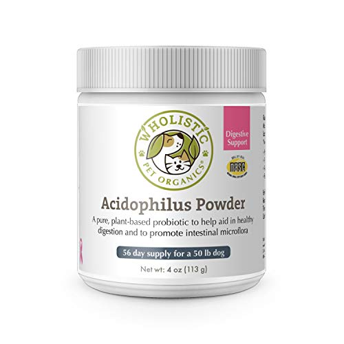 Wholistic Pet Organics Acidophilus Probiotic: Dog Probiotics - Lactobacillus Acidophilus Dog Probiotic Powder for Allergy Relief, Bad Breath, Diarrhea, Gas, Constipation, Yeast - 4 Oz