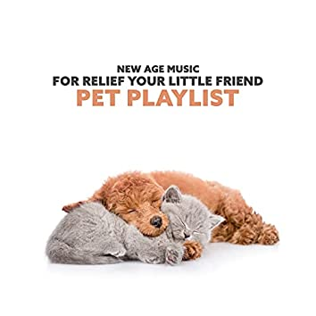 New Age Music for Relief Your Little Friend: Pet Playlist for Relaxing Deep Sleeping