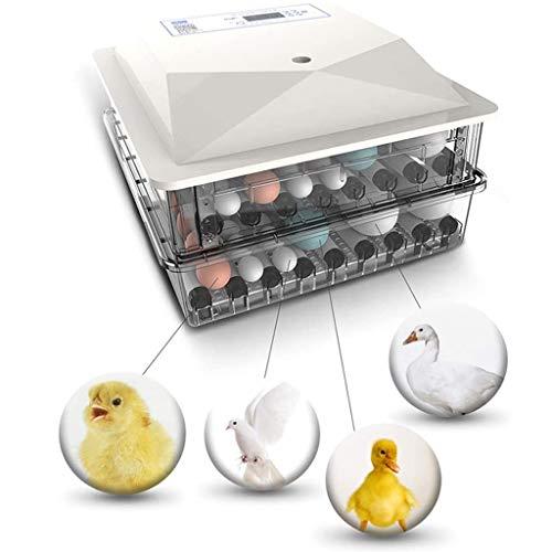 Egg Incubators For Broedeieren, Met Temperatuurregeling For Broedeieren Goose Quail Bevruchte Eieren, Ei Incubator Portable, Dual Power Poultry Hatcher 98 Kippeneieren