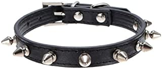 Dog Kingdom Pu Leather One Row Studded Spiked Adjustable Dog Collar
