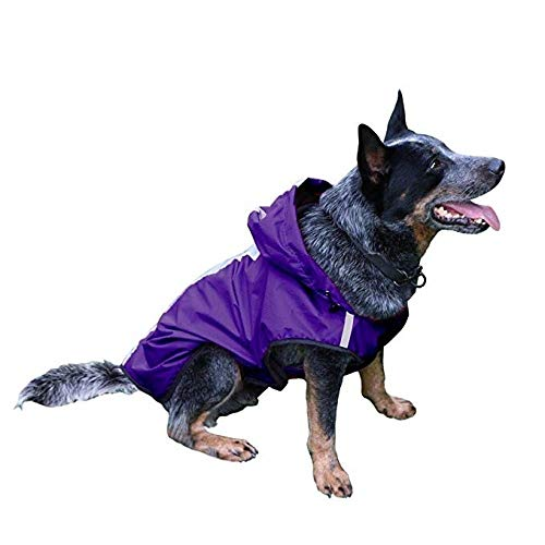 MIANJUMJ Regenjacken Für Hunde,Mobiles Leichtgewicht Hund Hunde Regenmantel Reflektierende Weste Lila Klein Mittel Groß Hunde Wasserfeste Kleidung Outdoor Pet-Jacke, M