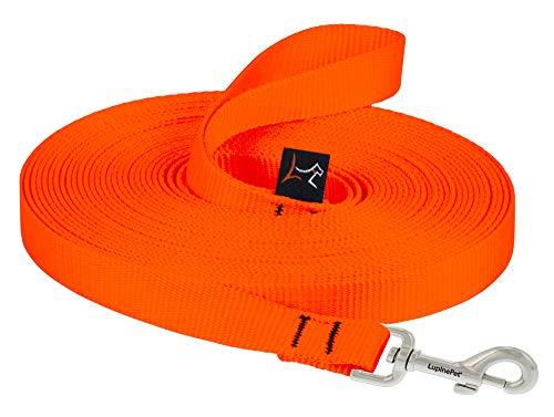 LupinePet Basics 3/4' Blaze Orange 30-Foot Extra-Long Training Lead/Leash for Medium and Larger Dogs
