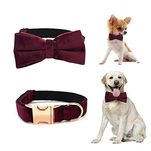 1A1A Cute Dog Collar Bow Bowtie Detachable Metal Buckle Dog Collar Comfortable Adjustable Women Dog Collar for Small Medium Large Dogs Velvet Wine Red M