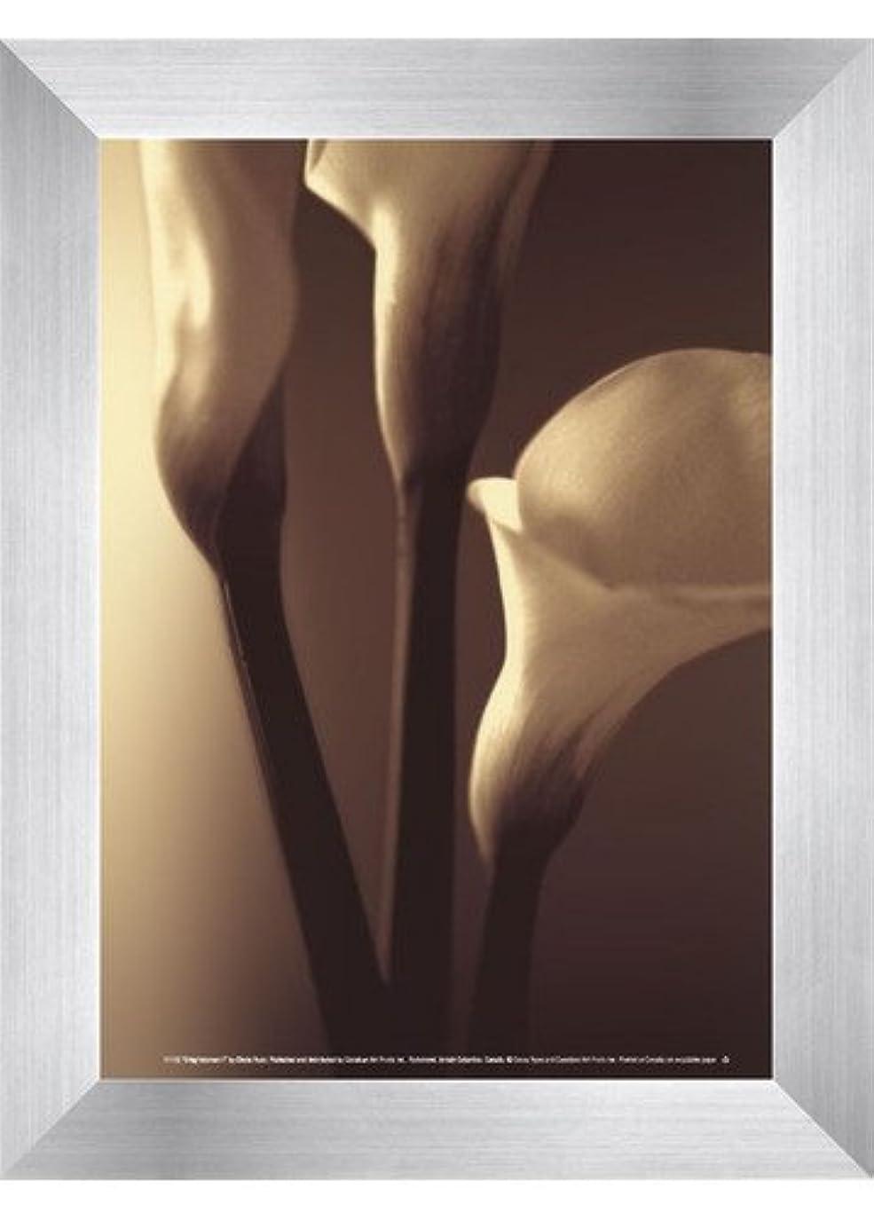 モネアスリート敬なEnlightenment I by Cinzia Ryan?–?5?x 7インチ?–?アートプリントポスター LE_194815-F9935-5x7