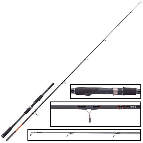 Balzer Shirasu Jerk S 1,95m 40-110g Jerkbaitrute für Stationärrolle, Spinnrute zum Jerkbaitangeln, Hechtrute zum Spinnfischen