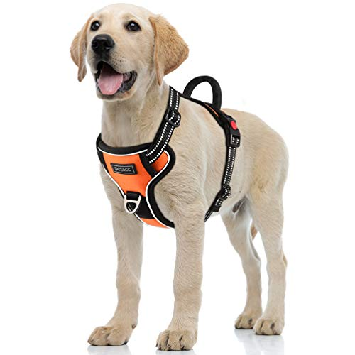 Petacc Dog Harness No-Pull Pet Harness Adjustable Outdoor Pet Reflective Vest Dog Walking Harness with Postpositive D-Ring Buckle and Handle for Small Medium Large Dogs (L, Bright Orange)
