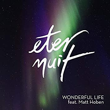 Wonderful Life (feat. Matt Hoben)