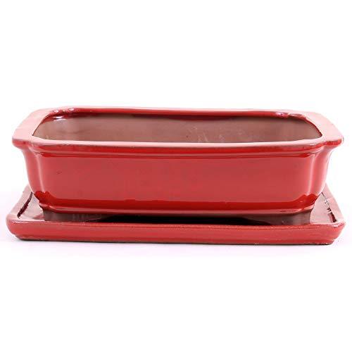 Bonsai 41079 Bol rectangulaire avec Soucoupe Rouge 31 x 24 x 8,5 cm