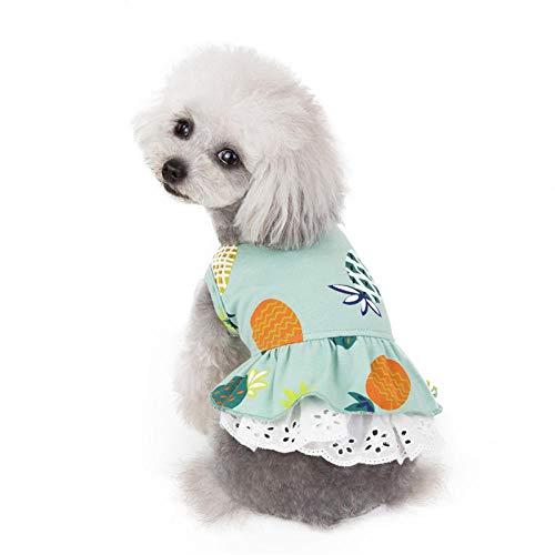AGQG Haustier-Kleidung, Bequemes Hundehemd Dame/Gentleman-Art für Teddy, Chihuahua, Kleiner Hund Kleidung Sommer Ananas weichen Rock
