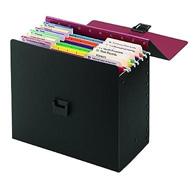 Smead Life Documents Organizer Kit (92010)