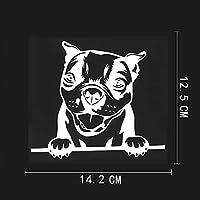 カーステッカー14.2CMX12.5CMラブリーボストンテリアデカール覗き見犬ビニールカーステッカーブラック/シルバー8A-0559