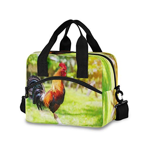 SunsetTrip Rooster Chicken Cute Animal Lunch Bag for Men Kids Women, Insulated Cooler Bag Reusable Lunch Box Tote Bag with Shoulder Strap Front Pocket for Work School Picnic Office Travel