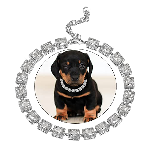 Cute Chain Dog Collar Bling for Puppy Kitty White Gold Iced Out 5A Cubic Zironia Tennis Collar for Male/Female Pet 10'