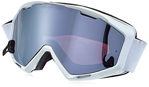 ALPINA Panoma S Skibrille, White, One Size
