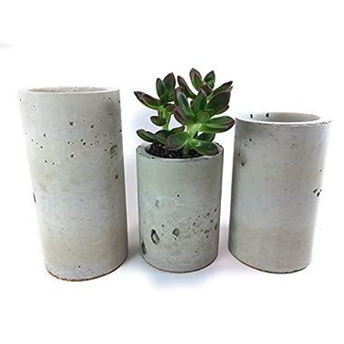 Concrete Succulent Planters / Air Plant Holders. Urba Planters. (set of 3) Natural gray.