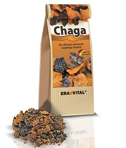 CHAGA Pilz aus Sibirien - GROB GEMAHLEN praktisch für ein Tee-Ei 150g IMMER FRISCH GELIEFERT Natürlich wild gesammelt nur Beste Qualität vom Fachhandel Schonend