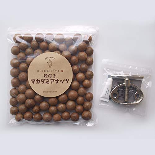 殻付きマカダミアナッツ (600g(殻割り器付き))