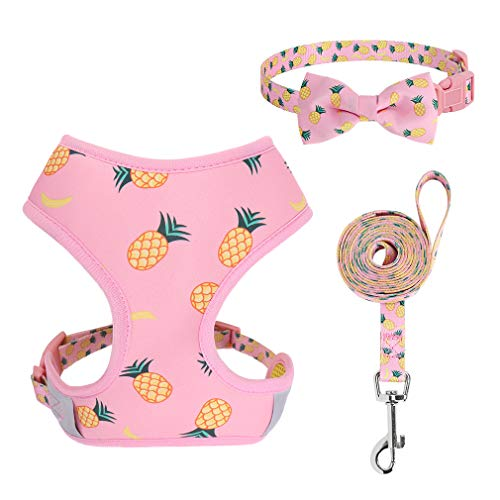 PUPTECK Dog Harness and Leash Set - Adjustable Cute Dog Bowtie Collar, Breathable Pineapple Comfort Padded Puppy Vest Harnesses for Small Medium Dogs Walking