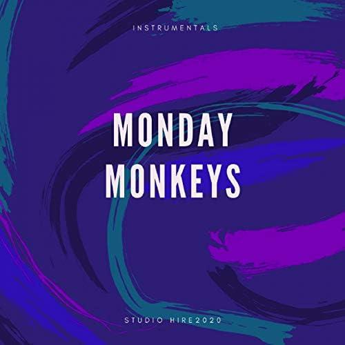 Monday Monkeys