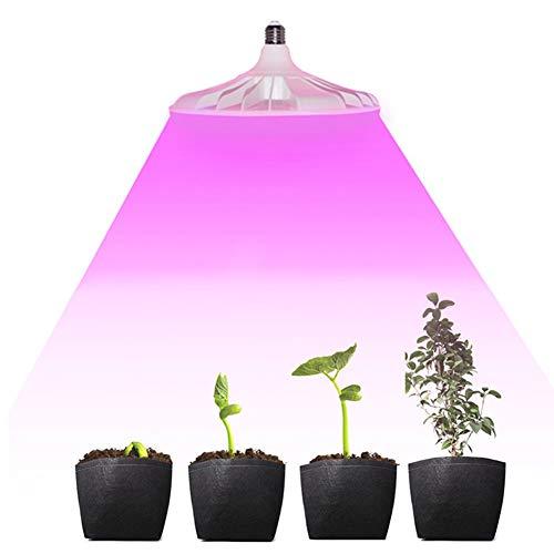 Led Pflanzenlampe Vollspektrum 40W Pflanzenlicht Pflanzenleuchte Wachstumslampe Grow Lampe Zimmerpflanzen für Gewächshaus Sämlinge und Sukkulenten Gartenbau