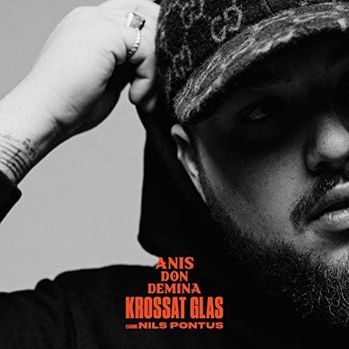 Anis Don Demina feat. Nils Pontus, Råsa & Timbuktu