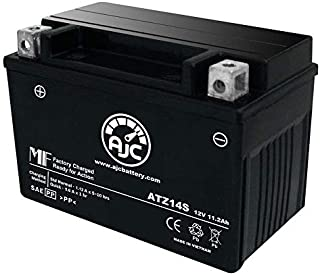 Best fz1 battery replacement Reviews