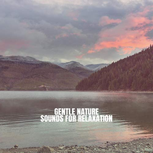 Rain Sounds Nature Collection, Rain Sounds Sleep & Nature Sound Series
