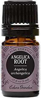 Edens Garden Angelica Root Essential Oil, 100% Pure Therapeutic Grade (Highest Quality Aromatherapy Oils- Cold Flu & Sleep), 5 ml