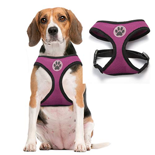bingpet dog harness for cars BINGPET Soft Mesh Dog Harness Pet Walking Vest Puppy Padded Harnesses Adjustable, Purple Medium