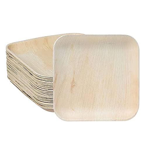 BIODORF Palmblatt Teller 25 Stück, kompostierbar und biologisch abbaubar, umweltfreundliches geschirr, chemiefrei (18 cm Quadratisch)