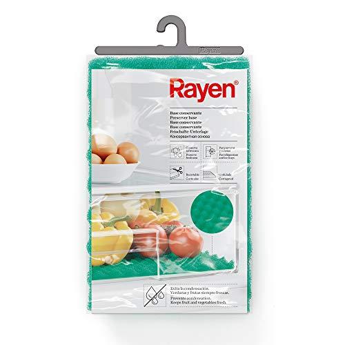Rayen 6313.01 - Base conservante para nevera, 47 x 30 cm