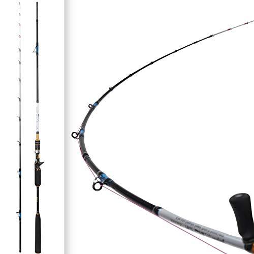 Small Lake Luz 2.1m 8 40g Slow Jigging Varilla de Carbono de acción rápida cañas de Pescar Rotación de Las guías del Asiento del Carrete, Negro, 2,1 m