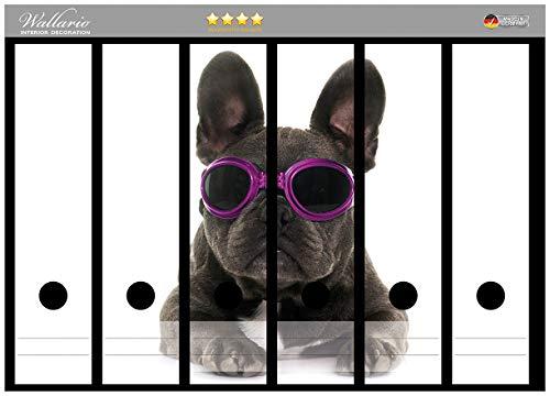 Wallario Ordnerrücken Sticker Cooler Hund mit Sonnenbrille in pink - Französische Bulldogge in Premiumqualität - Größe 36 x 30 cm, passend für 6 breite Ordnerrücken