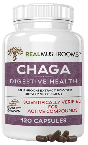 Chaga Mushroom Extract by Real Mushrooms – Certified Organic – 60g Bulk Powder – Wild Harvested – Use with Shakes…