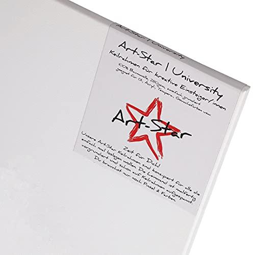 BK BILDERRAHMEN KOLMER 1 ARTSTAR LEINWAND AUF KEILRAHMEN malfertig grundiert günstig im Preis | Format: 20x20cm