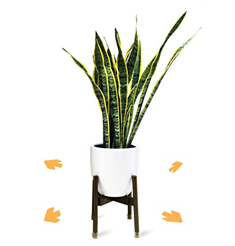 Adjustable Mid Century Modern Plant Stand for Pot Sizes 9