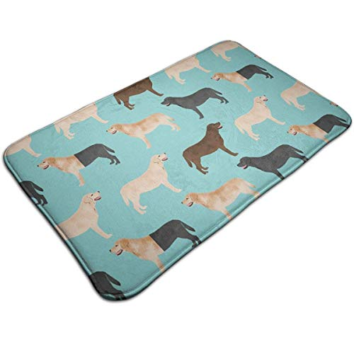 Balance-Life Dog Indoor/Outdoor Flat 40x60cm Made of 100% Polyester Extra Soft and Non Slip Area Rug for Bedroom, Kitchen, Living Room, Office, Playroom-4AI