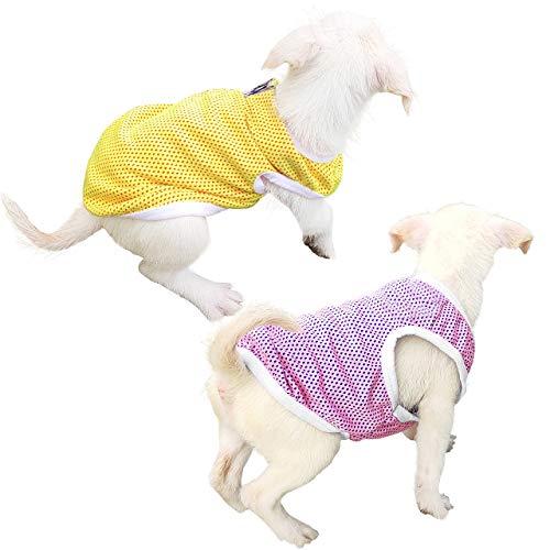 QiCheng & LYS Camiseta para Perros de 2 Piezas, Chaleco Deportivo para Perros, Suave y Transpirable Adecuado para Perros pequeños y medianos (Rosado/Amarillo, XL)