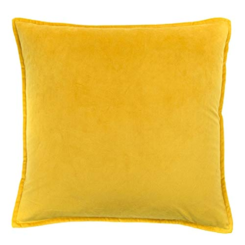 YUANYOU Soft Velvet Cushion Cover, Decorative Pillows Throw Pillow Case, Soft Solid Colors Home Decor Living Room Sofa Seat, included Pillow Insert(45x45cm)