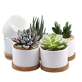 Succulent Pots ZOUTOG White Mini 3.15 inch Ceramic Flower Planter Pot with Bamboo Tray Pack of 6 - Plants Not Included