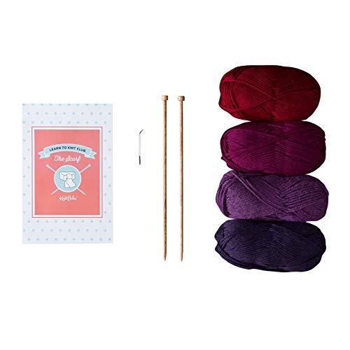 Knit Picks Learn to Knit Club: The Scarf - Beginner Knitting Kit (Jewel)