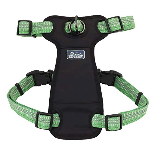 Coastal - K-9 Explorer - Brights Reflective Front-Connect Harness, Meadow, 5/8' x 16'-24'