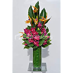 Silk Blooms Ltd Artificial Magenta Pink Cymbidium Orchid and Bird of Paradise Flower Arrangement w/Green Tulips and Leaves