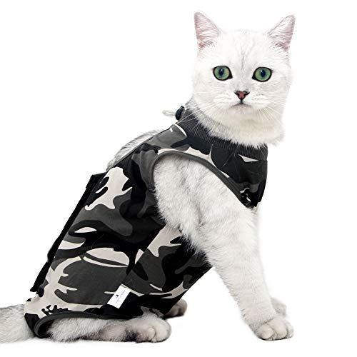 Cat Professional Recovery Suit for Abdominal Wounds or Skin Diseases, E-Collar...