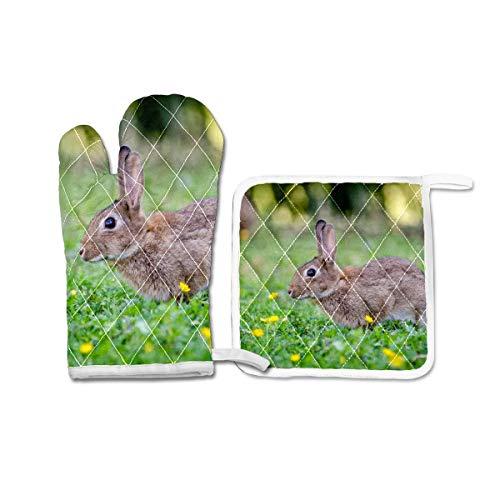Ofenhandschuhe und Topflappen, Set mit 2 hitzebeständigen Grillhandschuhen, Geschenk zum Backen, Grillen, Kaninchen, Grün