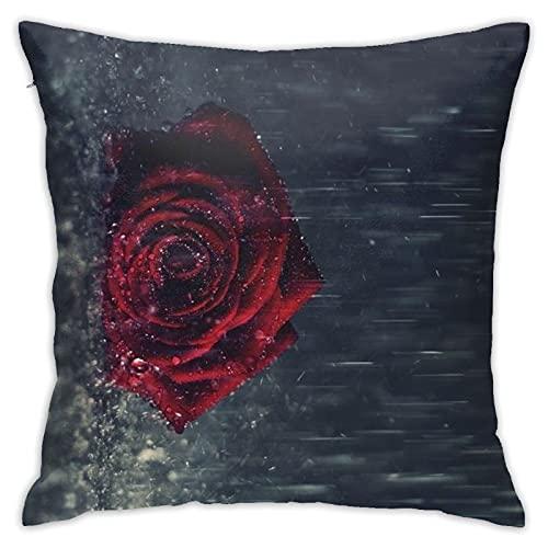 AJOR Funda de almohada decorativa para decoración del hogar, cuadrada, 45,7 x 45,7 cm