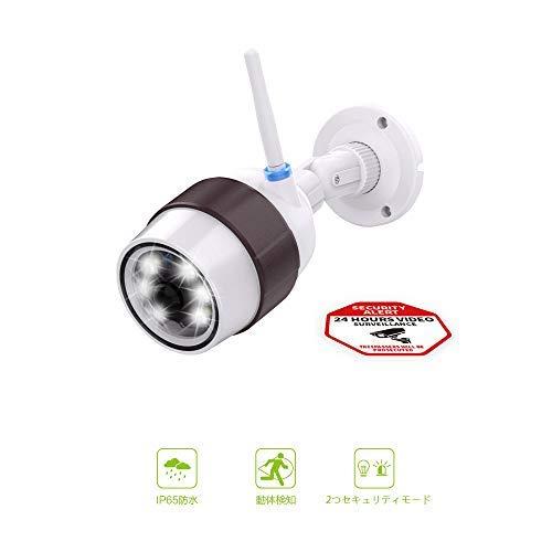 Freecam仮想カメラセンサーライトセキュリティカメラ仮想屋外迷彩カメラIP66防水/ほこり検出センサー6 LED自動夜間照明360度調整ガーデンエントランス駐車場倉庫倉庫ガーデン(C6D)
