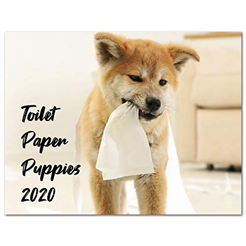 Calendar 2020, 2020 Wall Calendar with Thick Paper, 17' x 11.3' (Open), January - December 2020 - Toilet Paper Puppies
