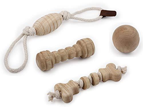 PETGARD 4er Sparpaket Hundespielzeug aus Holz und Seil Holzspielzeuge Apportierholz für kleine Hunde