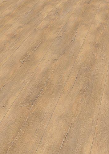 EGGER Home Laminat hell braun Holzoptik - Verdon Eiche hell  EHL042 (8mm, 2,533 m²) Klick Laminatboden | Kingsize Diele